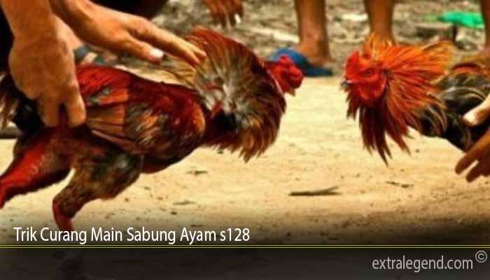 Trik Curang Main Sabung Ayam s128
